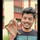 Rohit, 33  , Kalyan