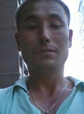 bek, 38, Uzbekistan, Tirmiz