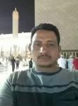 الصقر المهاجر, 39  , Sohag