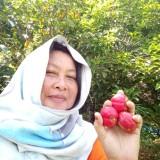 Pandi Bujang, 40  , Kuching