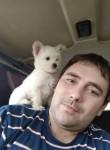 Anton, 31  , Sevastopol