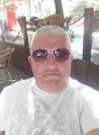 Dragan Nikolic, 38  , Zajecar
