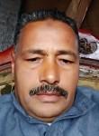 مولانا, 54  , Cairo