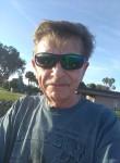 Bob, 68  , Haines City