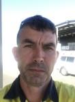 Cort, 40  , Brisbane