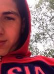 Andrey, 19  , Nizhniy Novgorod