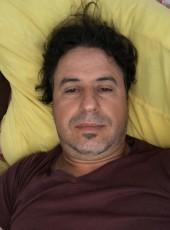el guerrouj, 40, France, Albi