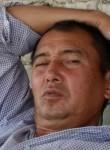 Alisher, 51  , Andijon