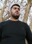 Bayar, 18  , Baghdad