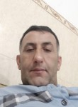 Seyhan, 47  , Zaxo