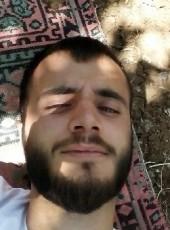 ali, 25, Turkey, Sirnak
