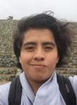 Javier, 25  , Puebla (Puebla)