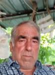 Kartl, 65  , Torbali
