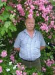 ivan, 55  , Krasnodar
