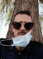 Mounir , 27, United Arab Emirates, Al Ain