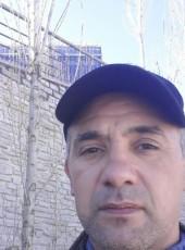 Araz, 51, Azerbaijan, Baku