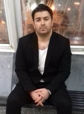 Shahin, 33, Iran, Tehran