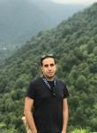 Mehrdad, 29  , Shiraz