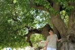 Ekaterina, 34 - Just Me Photography 4