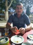 Elis, 31  , Baku