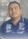 حسن ابوشمس, 40  , Alexandria