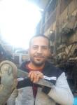 سامر, 41  , Cairo