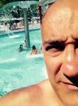 flick, 51  , Spezzano Albanese