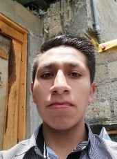 Luis, 18, Mexico, Villa Cuauhtemoc Otzolotepec
