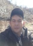 Shurik, 39  , Tashkent