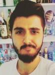 Tolgaa, 25  , Alapli