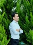 Terlan, 30  , Baku