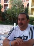 omarsankary, 52  , Al Mansurah