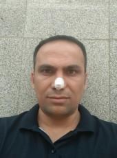 ali rahimi, 40, Iran, Tehran