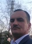 Elsever, 52  , Baku