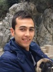 Mustafa, 29  , Beypazari