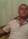qoshqar2014