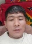 gosti, 35  , Bishkek