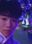 li政, 20  , Xiuying