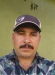 Orfil, 41  , San Jose