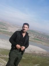 دلبرين, 27, Iraq, Erbil