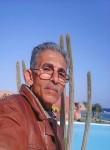 ابو شهد, 54  , Cairo