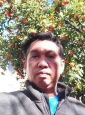 Hoàng Dũng, 47, United States of America, San Jose