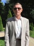 lisukov2011