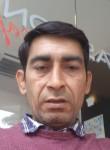 Arshad, 39  , Pollenca