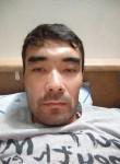 Shamil, 33, Ikryanoye