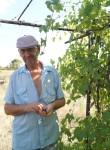 Aleksey, 61  , Kalach-na-Donu