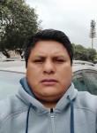 Wilber, 45  , Surco