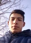 Albert, 18, Bucharest