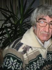 Mikhail, 69, Russia, Saint Petersburg