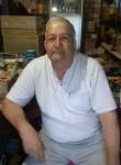 Siyafar., 61  , Amsterdam